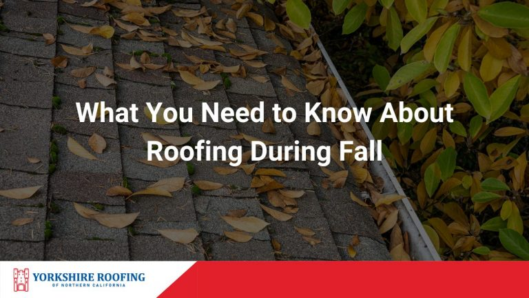 Fall Roofing